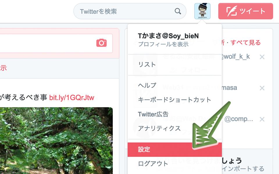 js-jquery-twitter-widget-timeline-customize-2